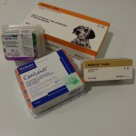 fotos vacunes